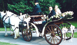 Small Victoria Carriage – 4 seat